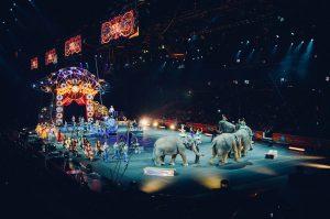 Circus Utrecht